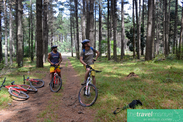Mountain Biking in Hogsback.