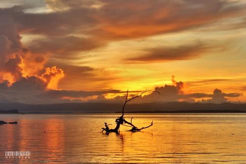 city sunrise golden autofocus tacloban