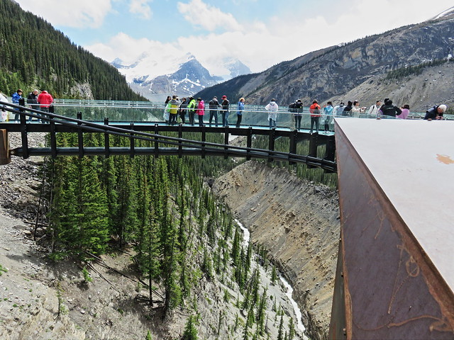 Jasper Glacier Skywalk 4-20150619