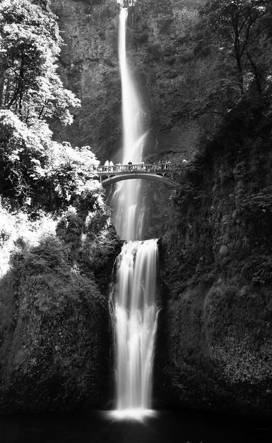 Multnomah Falls (B&W)