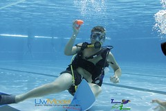 underwater diving, sports, recreation, outdoor recreation, underwater sports, water sport,