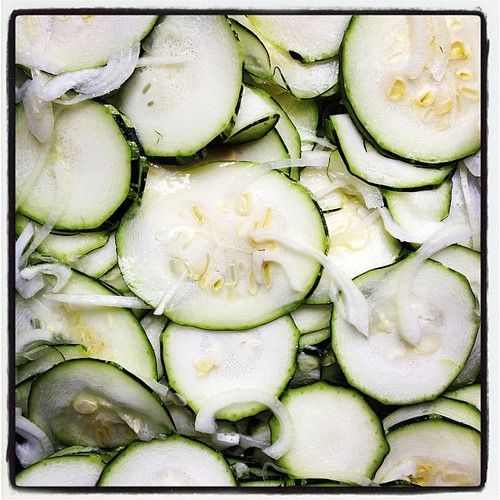 Marrow pickle project a la @zunicafe begins. #picklecult