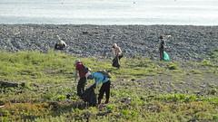 淨灘志工於台東比西里岸淨灘