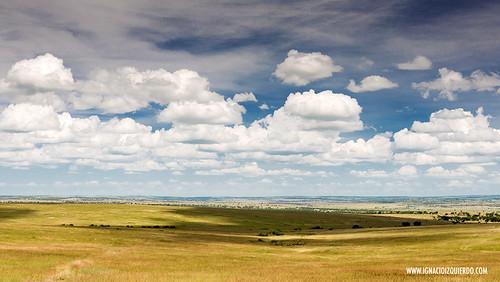 Kenia - Masai Mara 12
