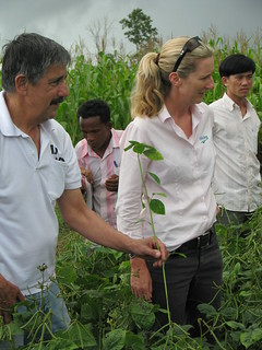 Australian volunteer Professor Bob Martin and agronomist Stephanie Belfield talk to farmers about the difference between 'good' bugs and 'bad' bugs in the fields. Cambodia 2010. Photo: AusAID