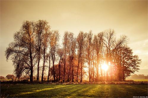 _warm_autumn by l--o-o--kin thru