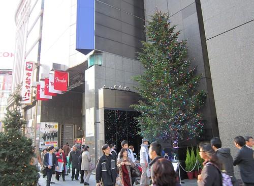 山野楽器とミキモトのクリスマスツリー 2013年12月6日 by Poran111