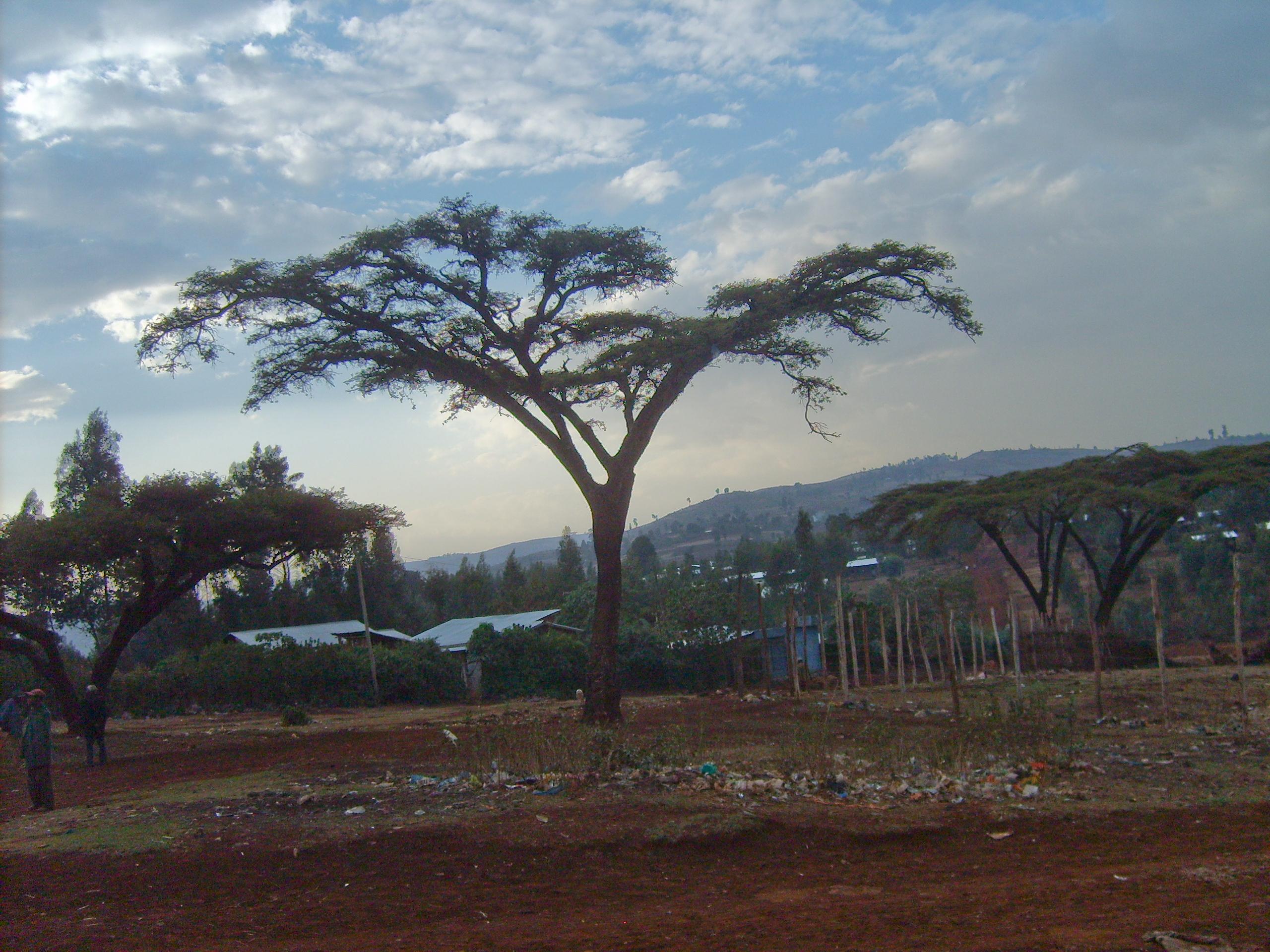 Ethiopia 2012 June