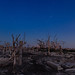 Epecuen at Night by lrargerich
