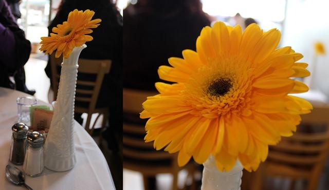 Yellow Flowers, Tall White Vase, Topsy's Kitchen, Petaluma CA - OOTD 1/11/2014