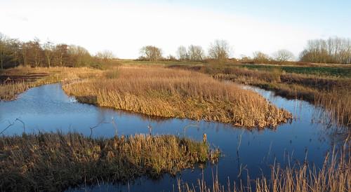 North Marsh