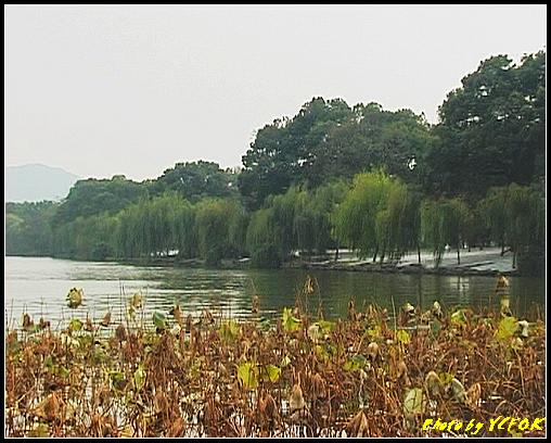 杭州 西湖 (其他景點) - 227 (從北山路 望向西湖十景之 蘇堤 蘇堤全長4公里)