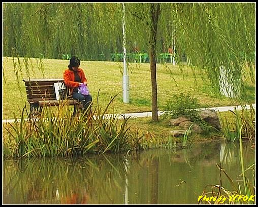 杭州 西湖 (其他景點) - 572 (西湖十景之 柳浪聞鶯)