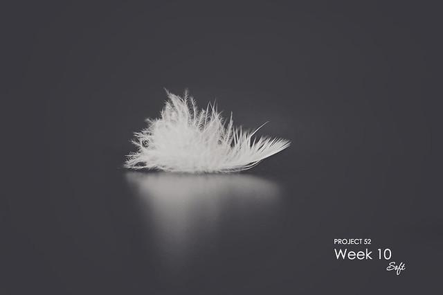 Week 10 - Soft