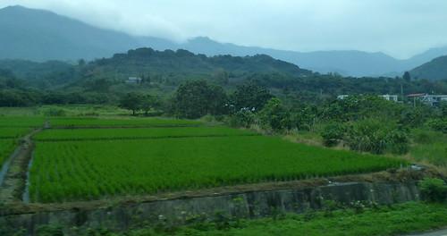 Taiwan-Taitung-Hualien-Route 11 (109)