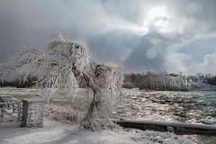 freezing rapids