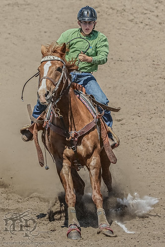 Gooseberry Lake : 4-H Rodeo 2013 : Crossing the Line