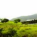 Varandha_Ghat-3