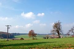 Bodenseehinterland bei Heiligenberg