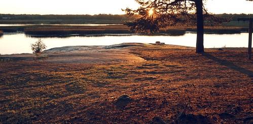 sunset sea nature water