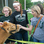 hmc030 -- Megan Dyer '14, Shelby Jackson '14, Leah Tacchi '14 and Lauren Podgorski '13 meet the cow who starred in the Cow Pie Bingo Game, a Habitat for Humanity fundraiser.