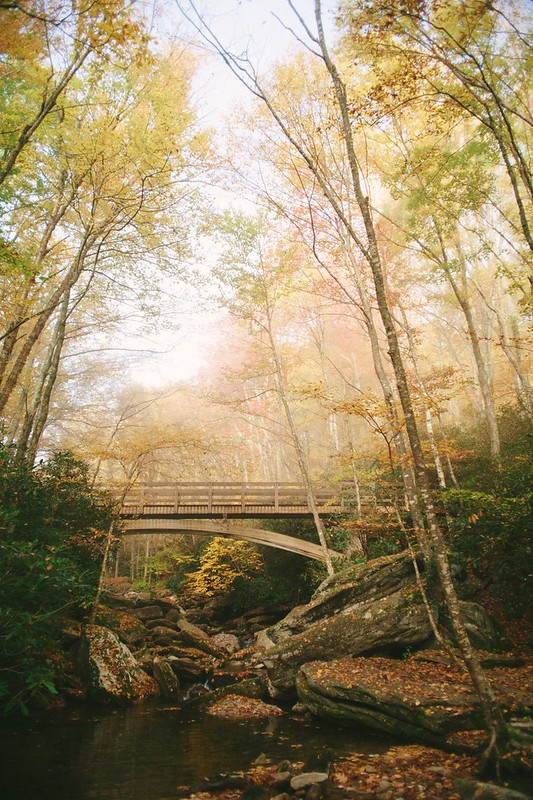 THIRD PLACE-View from the Trail-Adam Collins- Bridge Over Boone Fork- V13-0047
