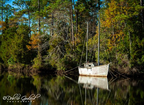 cruise trees reflection nature water mobile river landscape boats alabama fowl escc d700 camerasouth debbiegodard