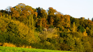 Tettenhall ridge, autumn, early morning sunlight