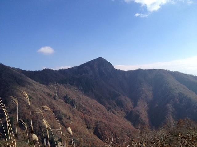 林道から冠山