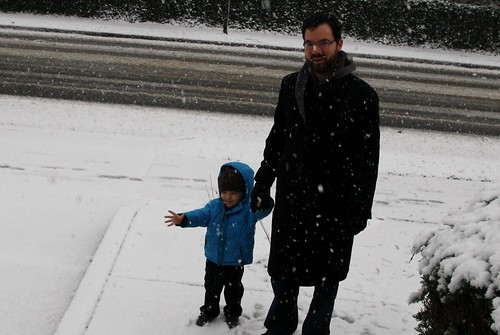 Snow- December 2013