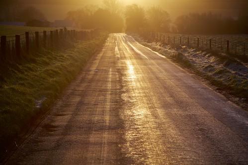 road trees winter mist tree field sunrise fence frost alba lane