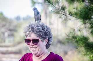Laura with Scrub Jay-006