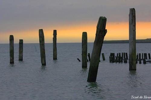 2 januari vroeg de wekker gezet om bij de Durper zeehond in de Cocksdorp te gaan kijken, daar gelijk deze zonsopkomst meegepakt in de oude haven aan de Waddenzee.....Texel 2014.