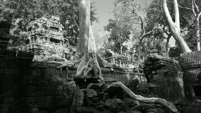 The Chaotic Beauty of Ta-Phrom