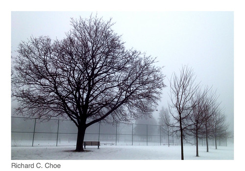 Foggy Day 9 (2013, 1.11) by rchoephoto