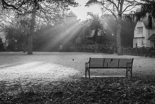 park morning winter light blackandwhite sunlight mist cold monochrome weather fog sunrise 35mm bench cool fuji f14 leicester peaceful frosty fujifilm streams rays icy fujinon tranquil scattered xf xseries newwalk mirrorless xpro1
