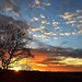 Chobham Common sunset by Andrew Boxall