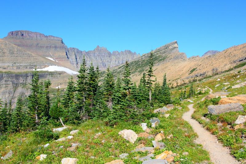 IMG_3741 Piegan Pass Trail