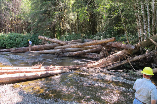 Forest Service employees Don Martin and John Lane inspect an in-stream restoration structure on 12-mile Creek, Prince of Wales Island. (U.S. Forest Service/Ron Medel)