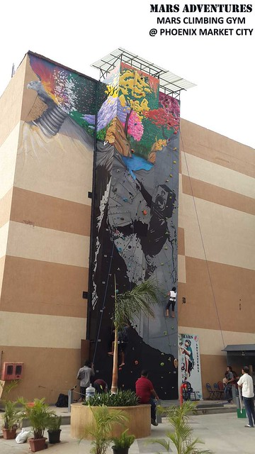 Phoenix-Climbing-Wall-Public-Art-Project-4