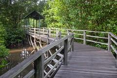 Kota Kinabalu Wetland Centre