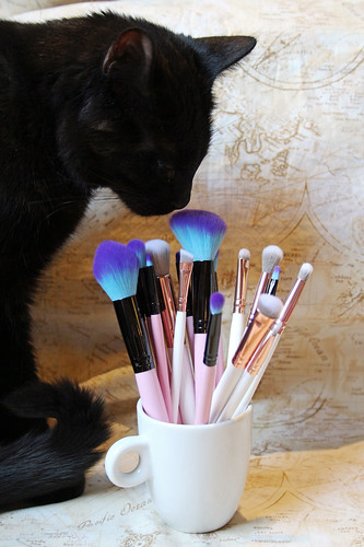 Loa approves of fluffy make-up brushes