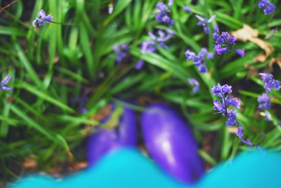 bottes violettes