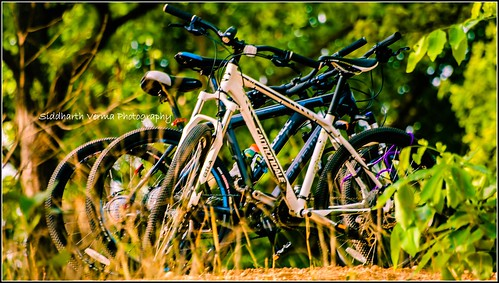 sunrise fun photography cycling nikon sunday trails bikes adobe cannondale lightroom picassa d5100