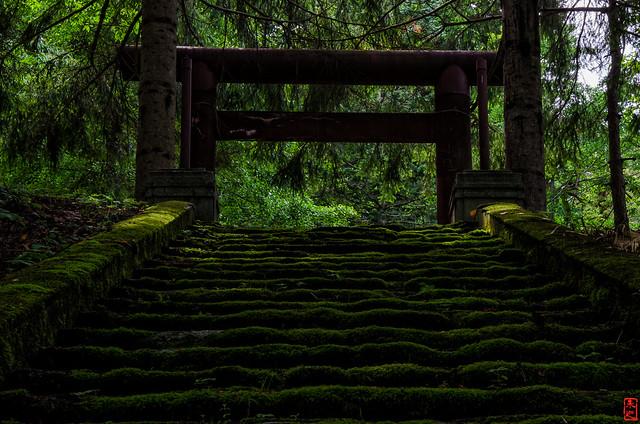 「幌内神社 苔むす」 三笠市幌内 - 北海道