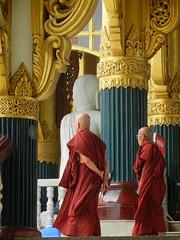 white marble buddha monks