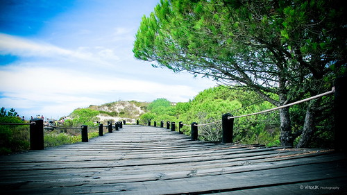 Best of Portugal  -  Sol Troia,  Setúbal  -  #4294