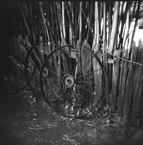 Wagon Wheels by wizowel