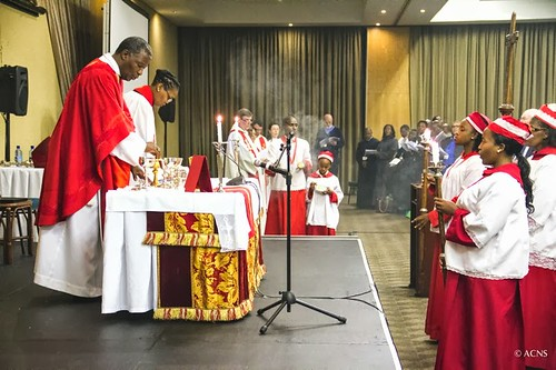 The synod is being held in Johannesburg, South Africa