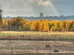 Cherry Creek State Park (hdr)
